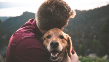 Types of emotional support dogs